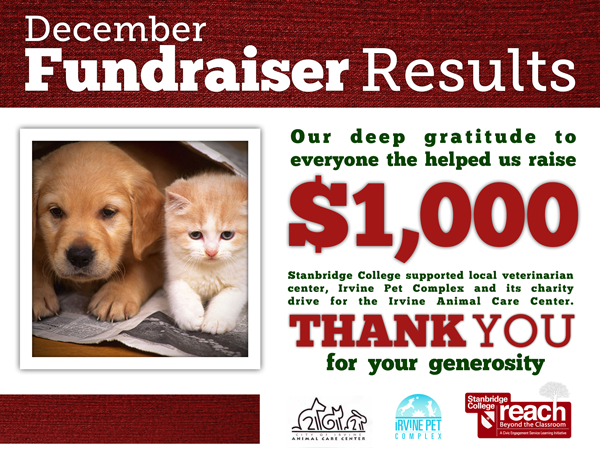 Presents for Paws: Stanbridge College Raises $1,000 for Homeless Animal Care