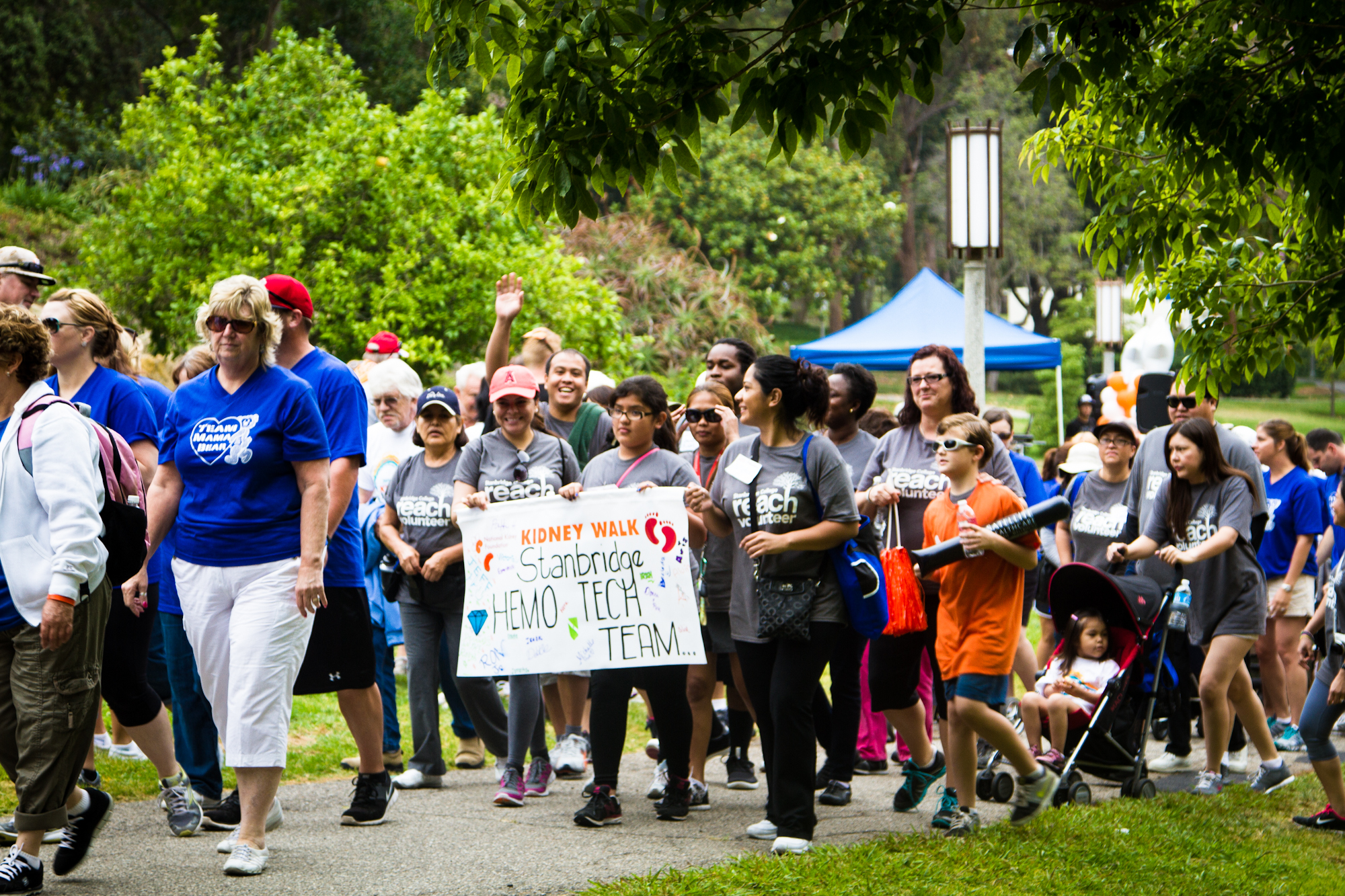 Dialysis Students Raise $370 for National Kidney Foundation OC Kidney Walk