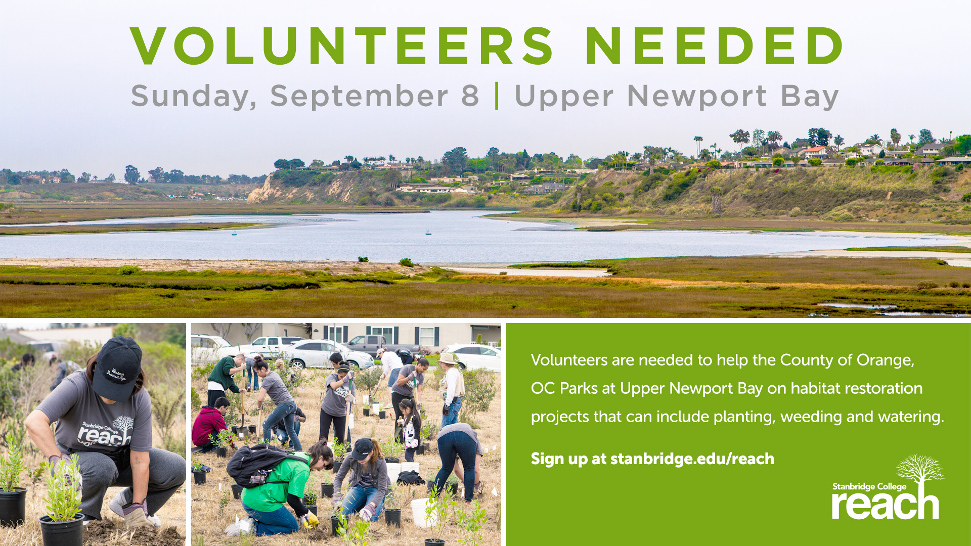 Preserve and Protect: Volunteer with OC Parks on Sunday, September 8th, 2013