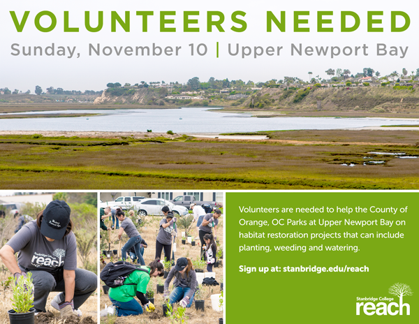 Preserve and Protect: Volunteer with OC Parks on Sunday, November 10th, 2013