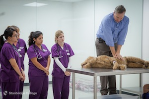 Cornell Professor Demonstrates World's First High-Fidelity Canine Patient Simulator at Stanbridge College