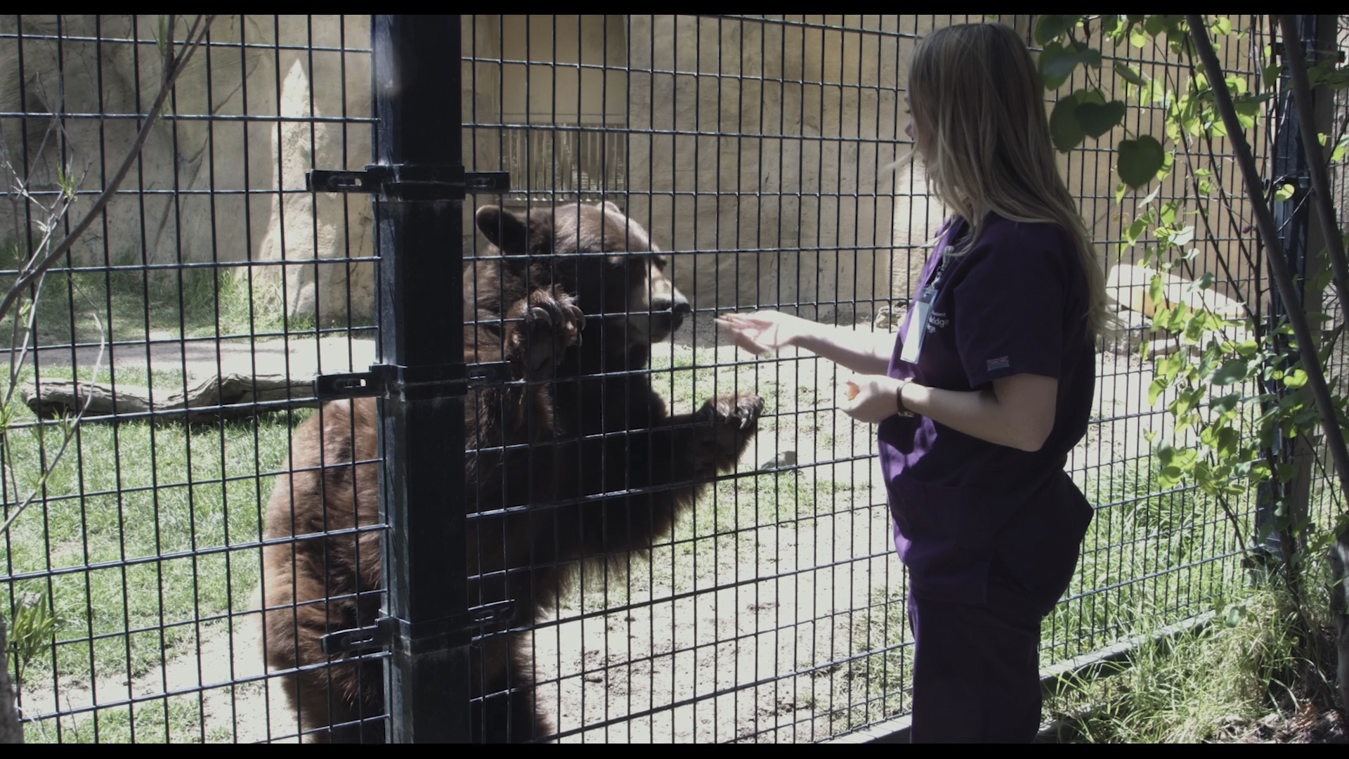 Vet Tech Student Volunteered with the OC Zoo to Develop Better Animal Care