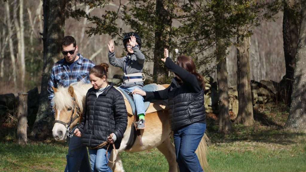 Horses Help in Occupational Therapy