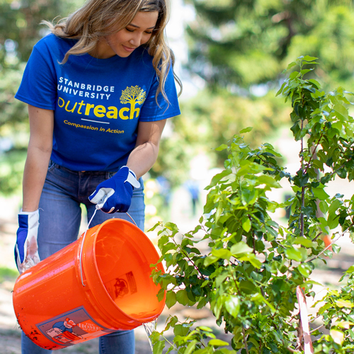 Tree Planting California: Local University Roots for Change